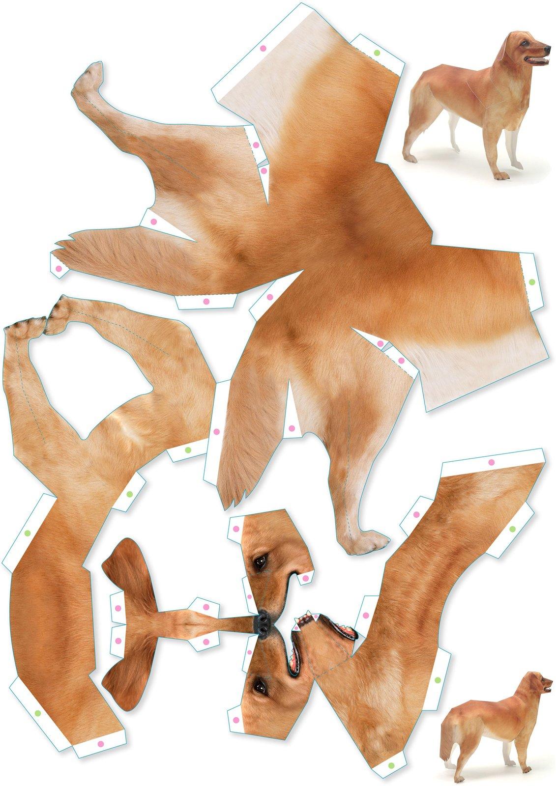 Картинка леопард для детей